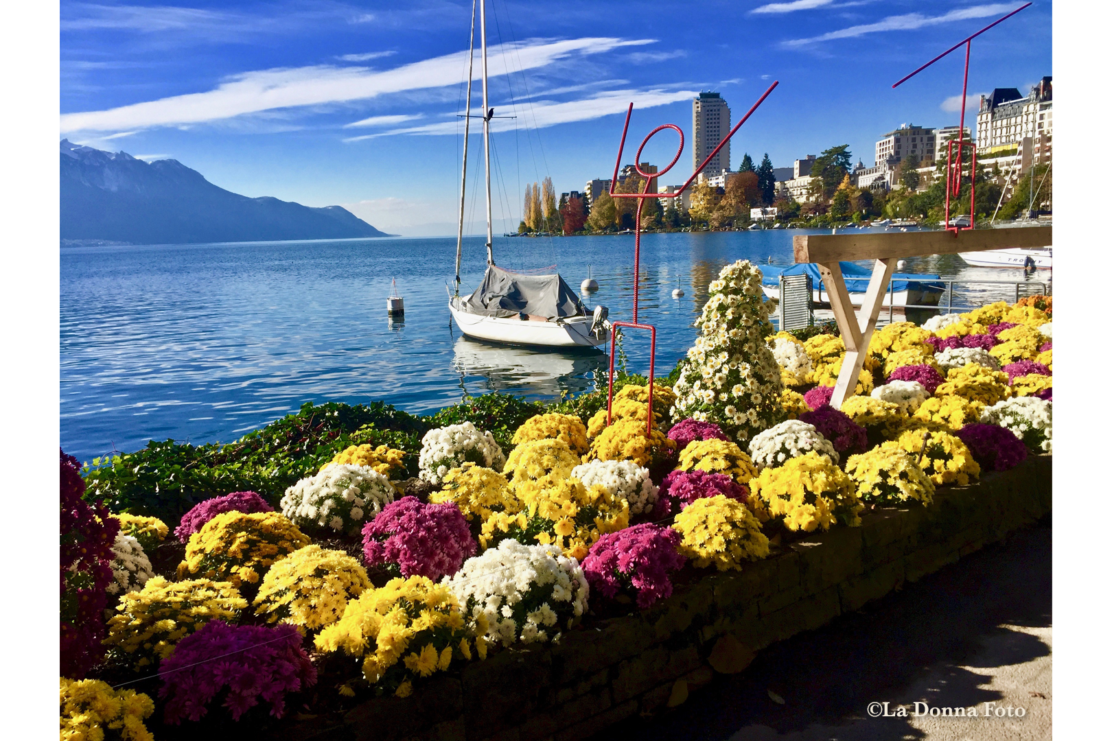 Fall Mums on Lake Geneva-Switzerland - Italian Landscape Photography - La Donna Foto Houston, TX 77007