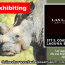 """Summer of Serenity"" Exhibiting in Las Laguna Art Gallery"